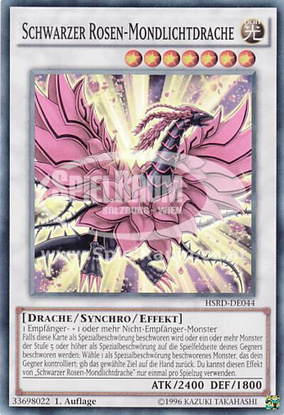 quasar drache